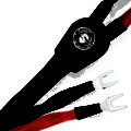 Eclipse 7 Speaker Cable